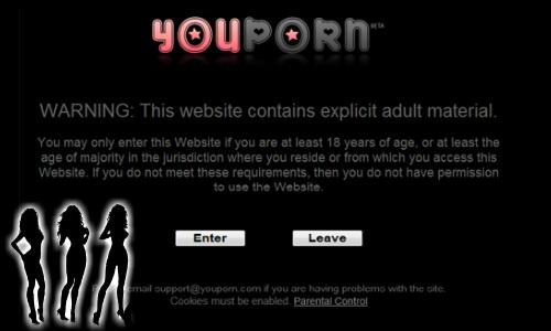 इस पोर्न साइट के 10 लाख पॉसवर्ड हो गए लीक