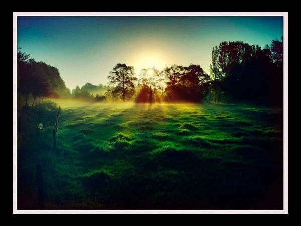 Sun Streaming in Foggy field By Robert-Paul Jansen
