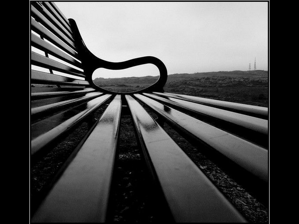 Blackford Bench By Photography JC
