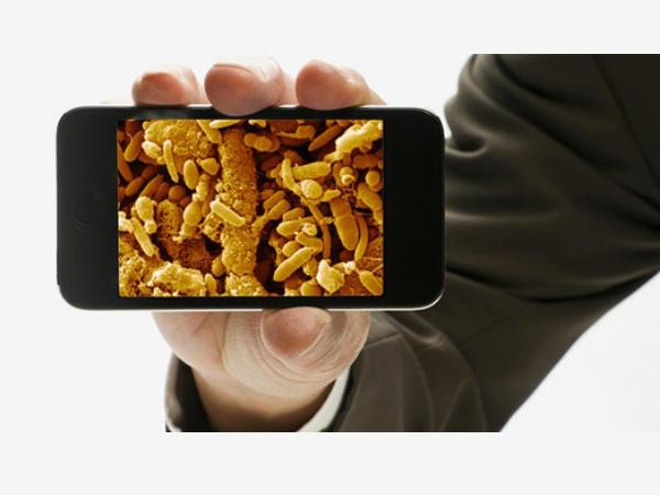 बैक्टीरिया का घर हो सकता है आपका स्मार्टफोन
