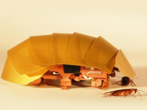 वैज्ञानिकों ने बनाया हथेली के आकार का रोबोट