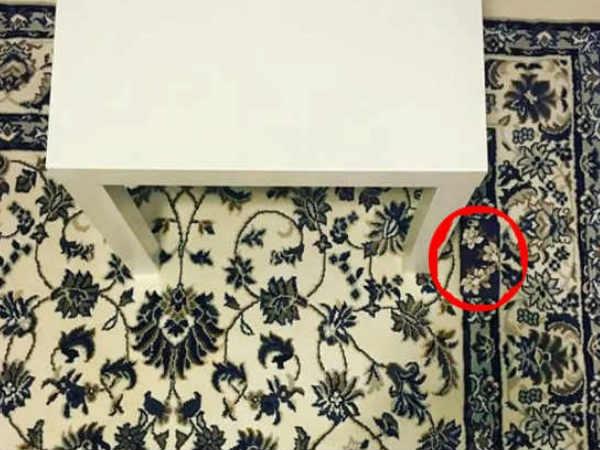 इस कारपेट में छुपा है एक आईफोन, क्या आपको मिला?