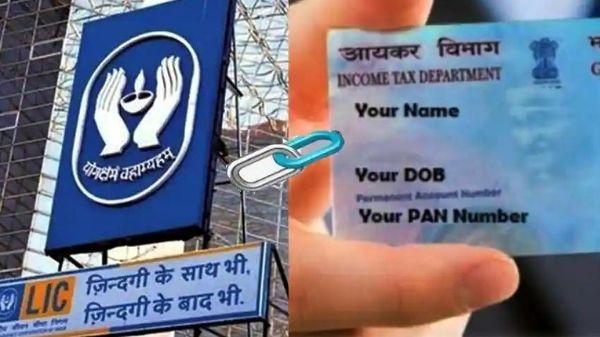 PAN Card Link With LIC Policy: पैन कार्ड को LIC पॉलिसी के साथ लिंक कैसे करें