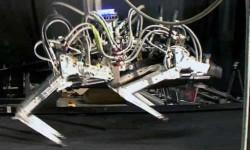 चीते से भी तेज दौड़ता है ये रोबोट