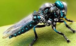 देखिए ये मशीनी कीड़े जिन्हें इंसानों ने बनाया है