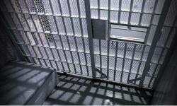 हिमाचल की जेलों में बंद कैदी कर सकेंगे वीडियो चैट