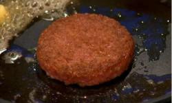 दुनियां का पहला लैब में बनाया गया बर्गर है ये