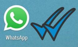 कैसे छिपाएं वॉट्सऐप में ब्लू टिक मार्क ?