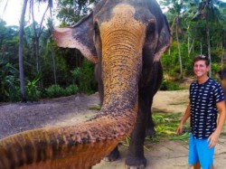 जब हाथी ने खींची सेल्फी..