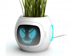 वैज्ञानिकों ने बनाया इलेक्ट्रॉनिक पौधा , होगी नए युग की शुरुआत