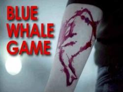 बैन के बाद भी इस नाम से मौजूद है ब्लूव्हेल गेम !