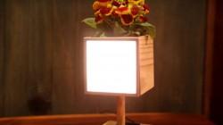 घर में कैसे बनाएं लिड लाइट वाला गमला ?