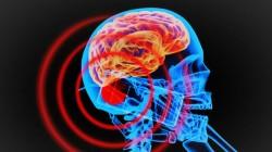आपके फोन से कितनी खतरनाक रेडिएशन रोज आपके शरीर में जा रही है...?