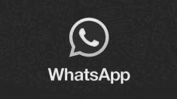 WhatsApp में कुछ नया फीचर जल्द आएगा, जानिए उनका क्या-क्या फायदा होगा