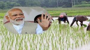पीएम किसान सम्मान निधि योजना का रजिस्ट्रेशन, बैलेंस चैक और शिकायत ऑनलाइन कैसे करें