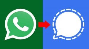 व्हाट्सऐप ग्रुप के चैट्स को सिग्नल ऐप में कैसे लेकर जाएं
