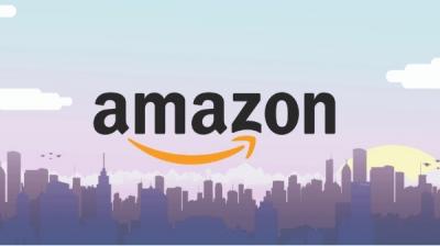 अमेजन पर नारियल के झिलके की कीमत 1,200 रुपए
